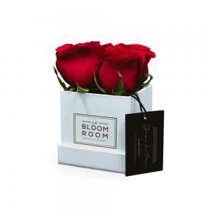 caja con 4 rosas mini