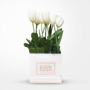 tulipanes en caja